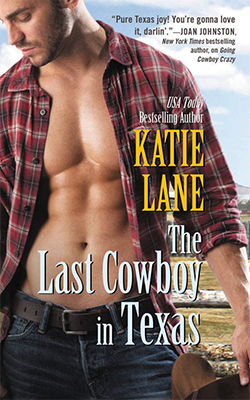 The Last Cowboy in Texas book cover image
